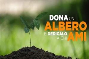 Firenze, un albero per la resilienza