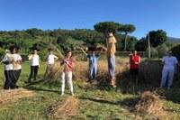 """10, 100, 1000 grani"""": i giovani coltivano semi di lotta alle mafie"""