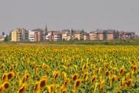 Bologna, al via la fase delle osservazioni sulPiano Territoriale Metropolitano