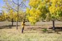 #ChiaraEco: Cambia il clima a Bologna