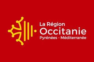Francia, Bilanci Partecipativi Regionali