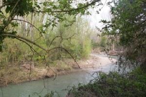 Ronco-Bidente partecipato: Vivi il tuo fiume