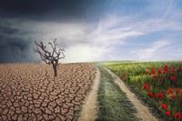UE, la vostra voce in Europa sui cambiamenti climatici