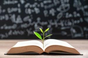 Consultazione Pubblica della Commissione Europea sull'Educazione alla sostenibilità ambientale