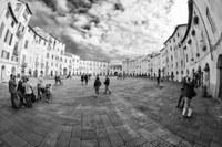 Partecipazione al Piano Operativo del Comune di Lucca